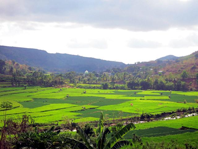 travel indonesia road trip wawo to sape