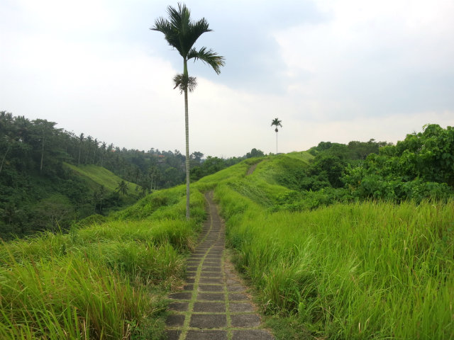 things to do campuhan ubud