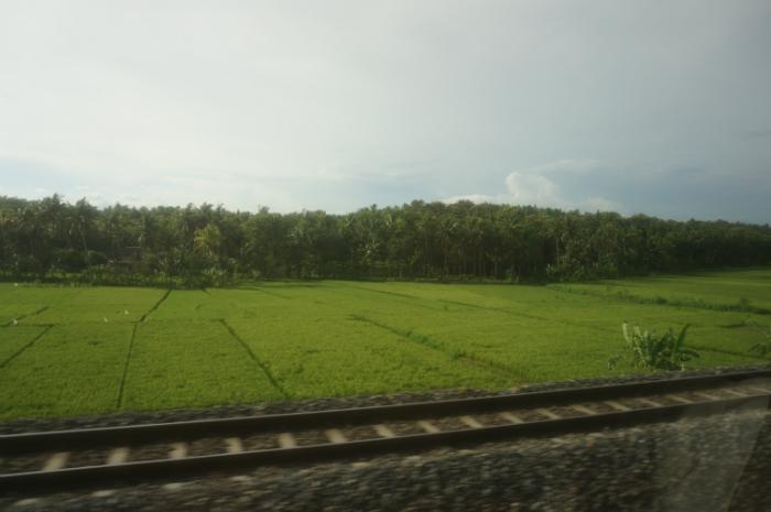 Travelling by Train Yogya Bromo