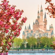 The Sights and Sounds of Shanghai Disneyland (videos)