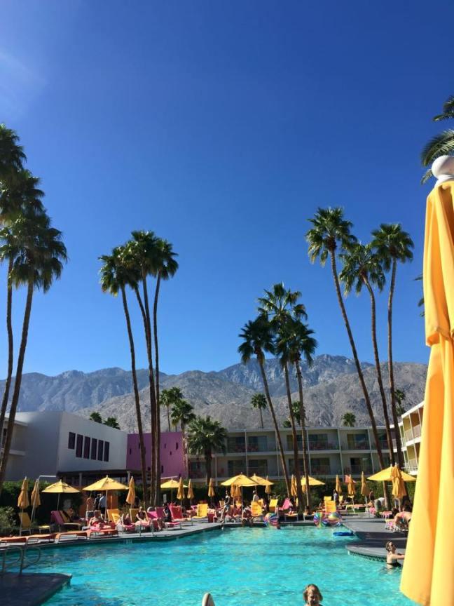 Palm Springs Saguaro