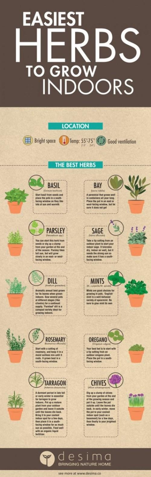 Medium Of Build An Herb Garden