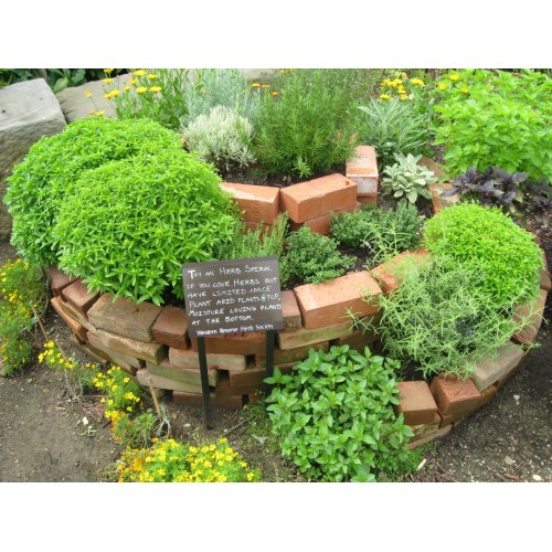 Medium Crop Of Vertical Herb Garden Plans