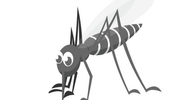 World Mosquito Day - August 20