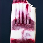 Combine blackberries and coconut milk to make these delicious popsicles.