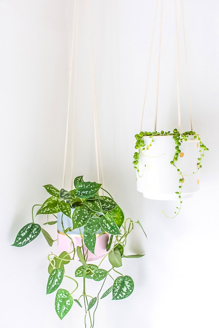Give a hanging planter an easy DIY upgrade with paint and gold leaf
