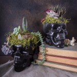 Keep it spooky with these DIY black Halloween skull planters.