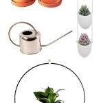 Spring Plant Wishlist & DIY Ideas