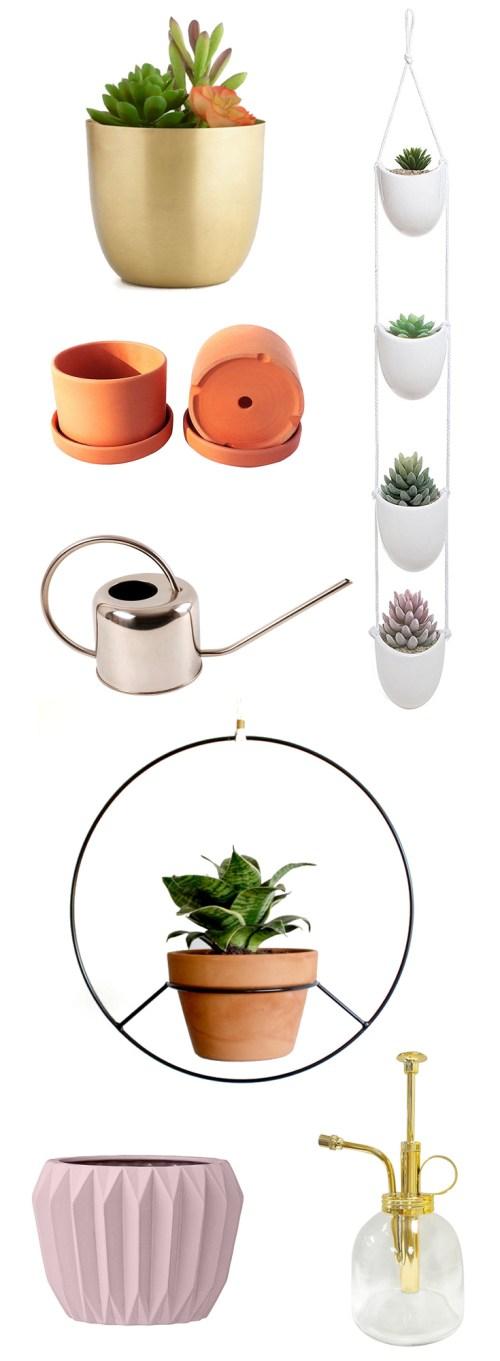 spring plant wishlist