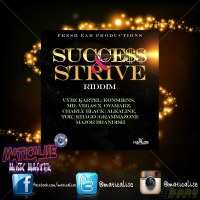 Success & Strive Riddim Mix (Fresh Ear Prod) February 2015