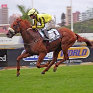 kra guineas - easy winner
