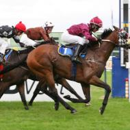 royal chalon wins the group 3 winter guineas