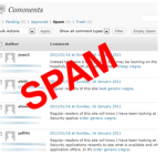 How to identify and Control Blog Comment Spam