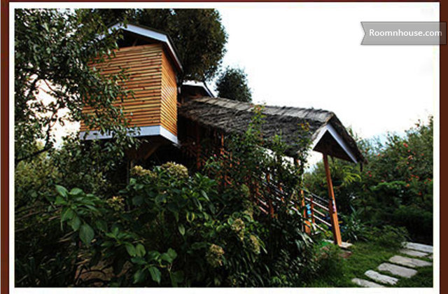 Treehouse In Manali