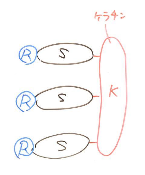 DSC_9797