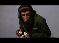Conquest of the Planet of the Apes Blu-ray screen shot 8