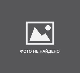 Бизнес-идеи: Услуги ксерокопирования и распечатки документов. Описание, преимущества и недостатки этого вида заработка. Дополнительная информация. Фото