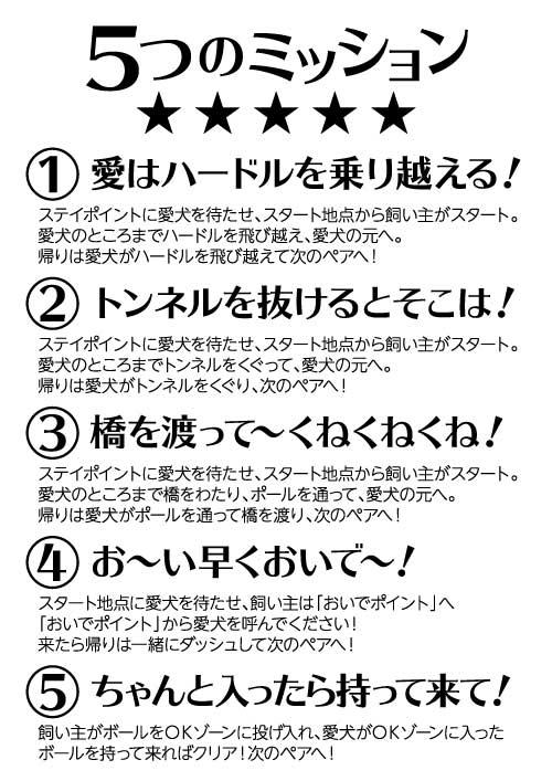 5つのミッション