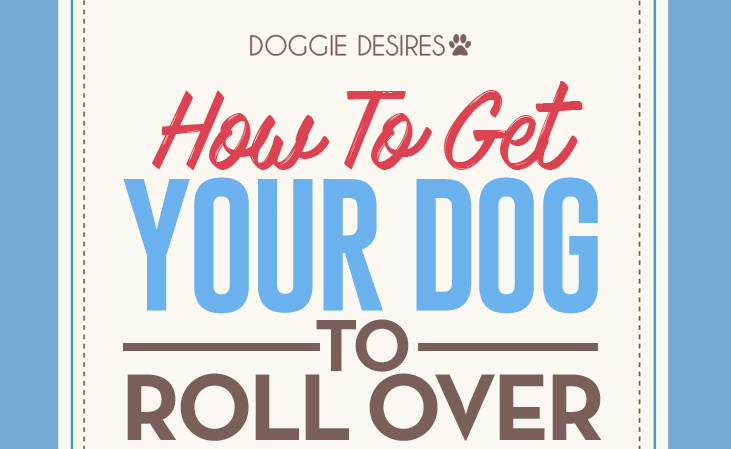 how to get your dog to roll over