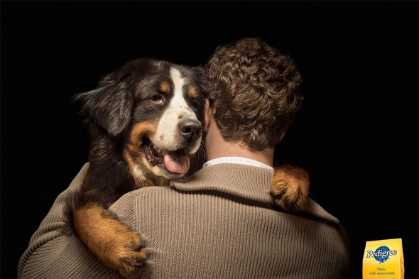 Pedigree we are for dogs ad