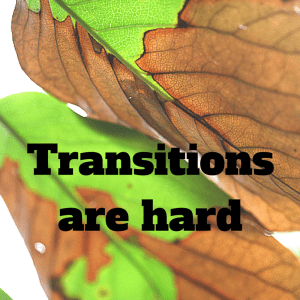 Transitions are hard