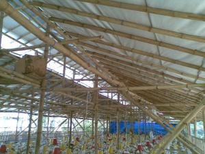 Kandang Atap Alumunium Foil Sejuk dan dingin