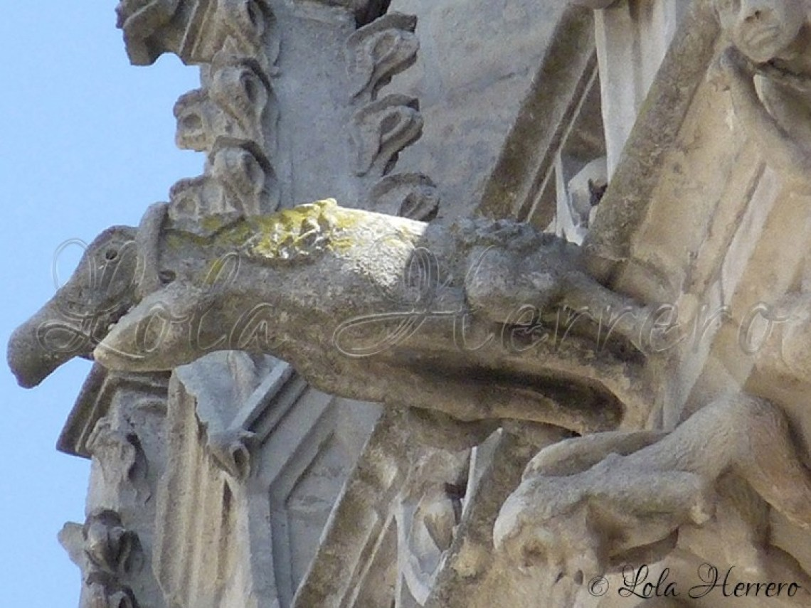 Catedral Burgos (264)