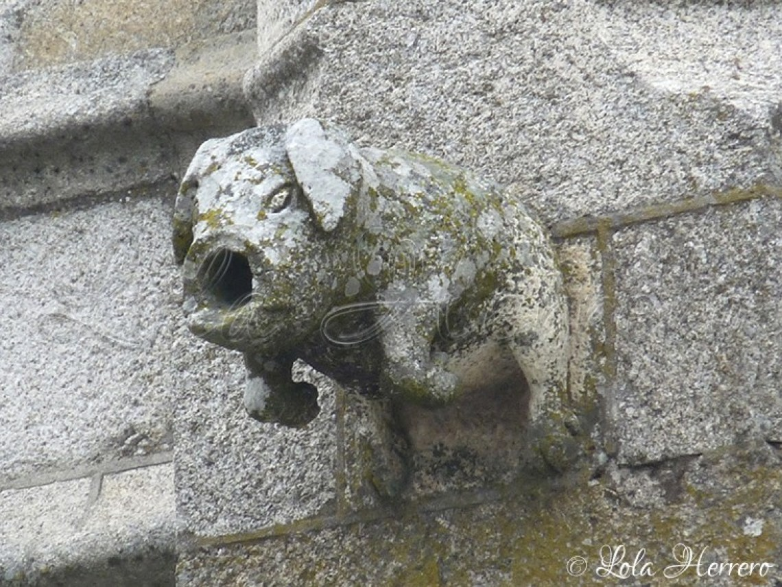 Catedral Guarda (Portugal) (287)