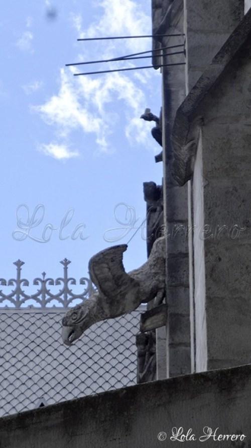 Gárgolas Quito (Ecuador) (255)