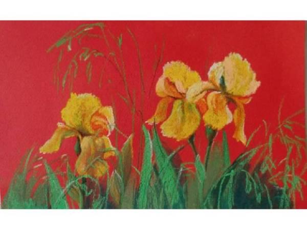 decorazione-dinterni-dipinti-murali-20140331025640