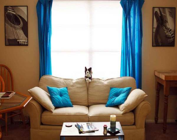 interior-living-room-cool-blue-double-curtain-windows-for-sitting-blue-living-room-with-two-seater-modern-couch-decors-winsome-blue-living-room-color-scheme-design-and-pics