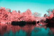 Infrared NYC, by Paolo Pettigiani
