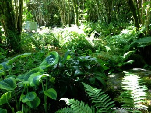 caher bridge garden (13)
