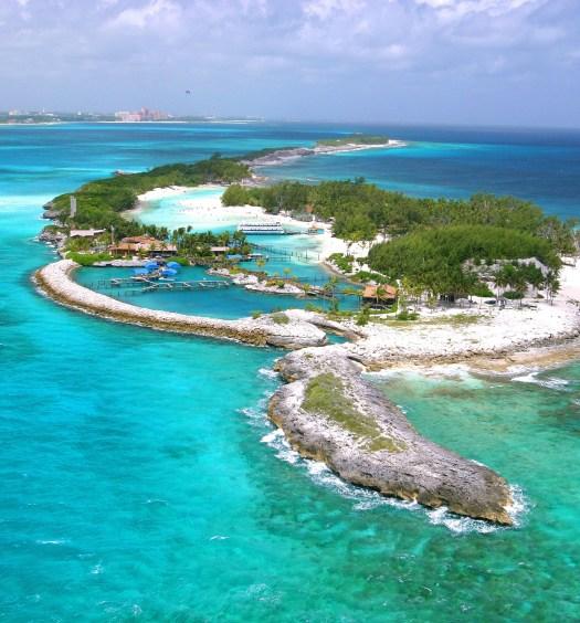 cópia de bahamas