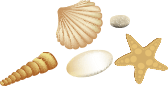 she sells sea shells down by the sea shore