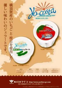 YO-COSUKA A