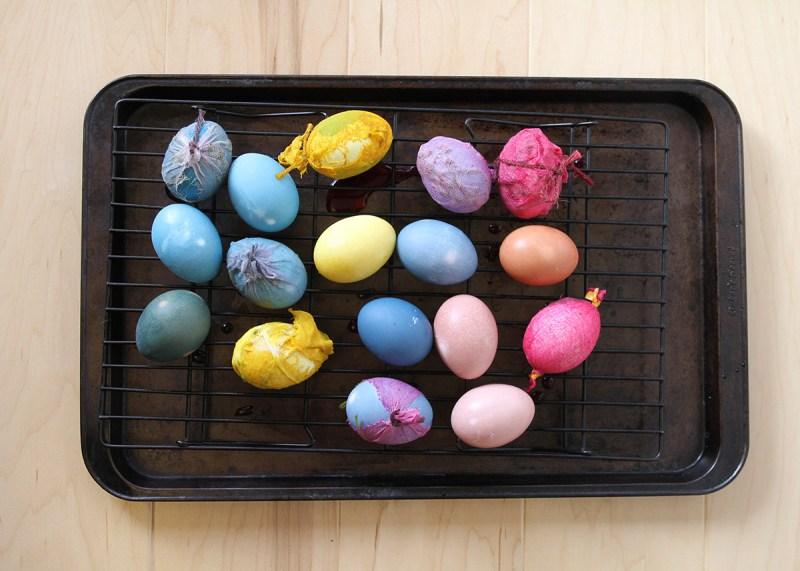 eggs4