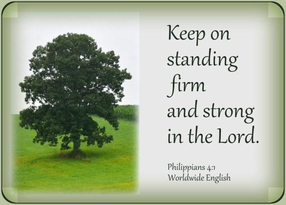 Philippians 4-1