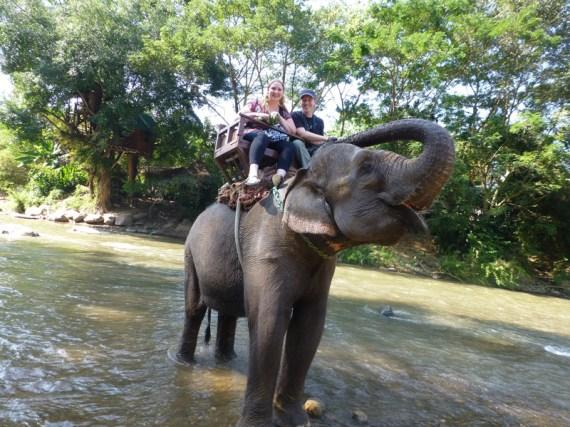 elephantriding_thailand_doublechindiary
