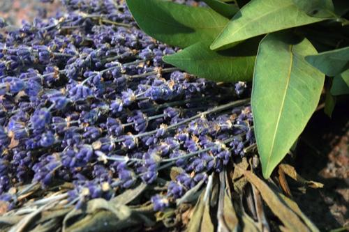 CreekSideFarms_Herbs_Wreaths_DoubleChinDiary