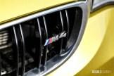 2015 BMW M4 grille emblem
