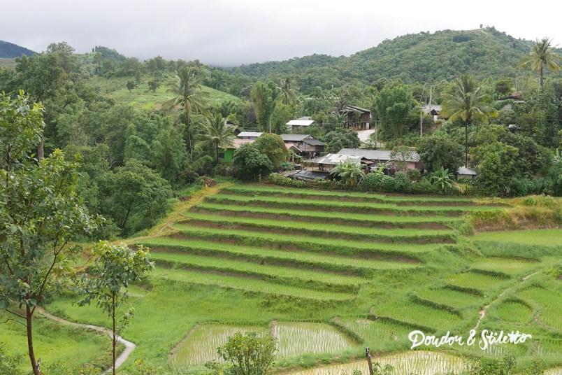 Evasion Karen Chiang Mai7