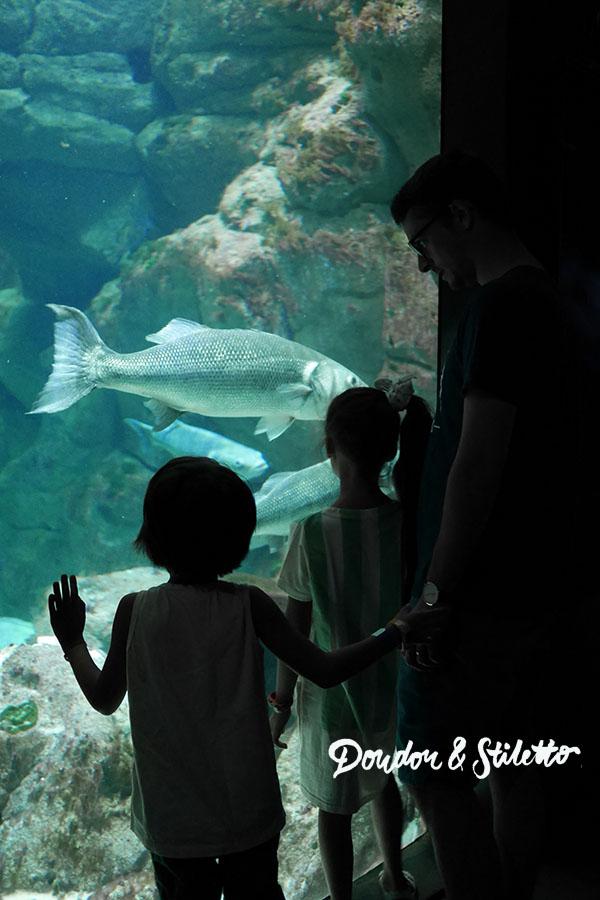 Peppa Pig Aquarium de Paris13