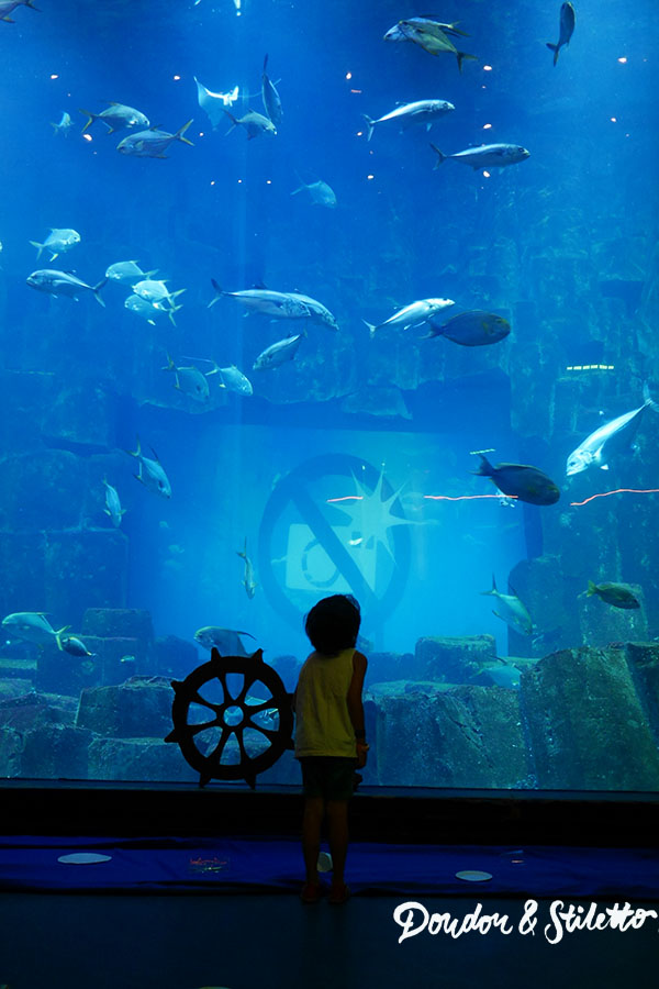 Peppa Pig Aquarium de Paris3