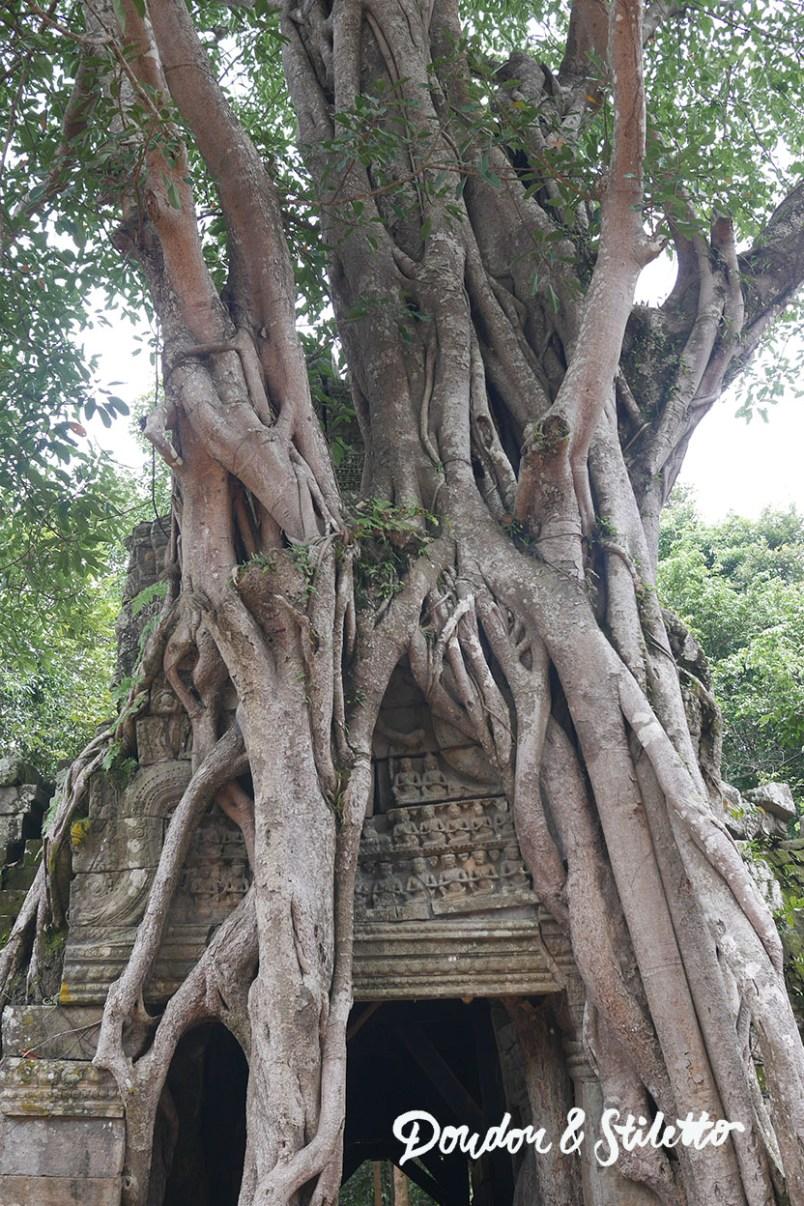Ta Som - Angkor5