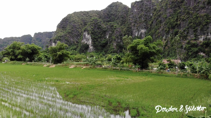 Ninh Binh4
