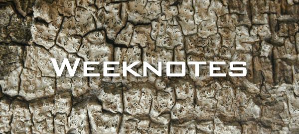 Weeknote 34/2013