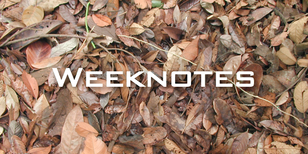 Weeknote 39/2013