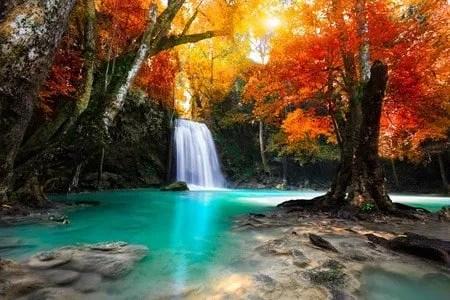 38758661 - deep forest waterfall