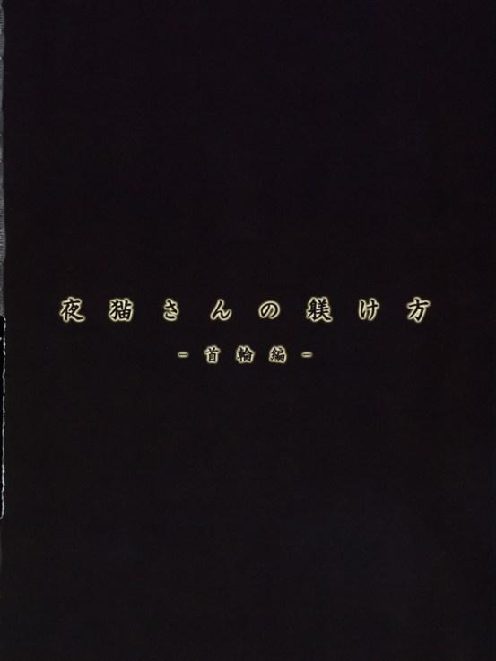 yoruichisannoshitsukekata003